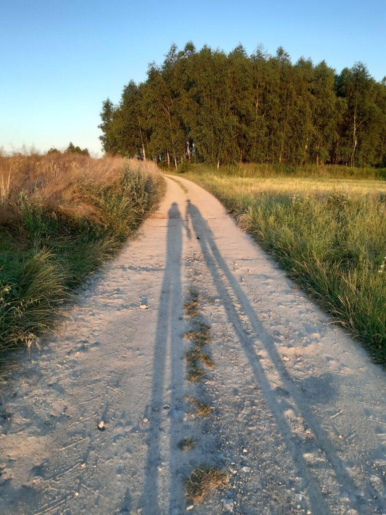 narzeczeństwo blog - cień pary narzeczonych na polnej ścieżce